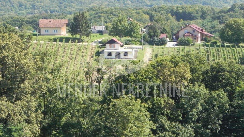 Haus, 136 m2, Verkauf, Jurovčak